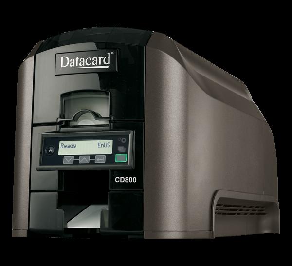CD800_600X546